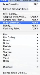 Lens Distortion Step 2